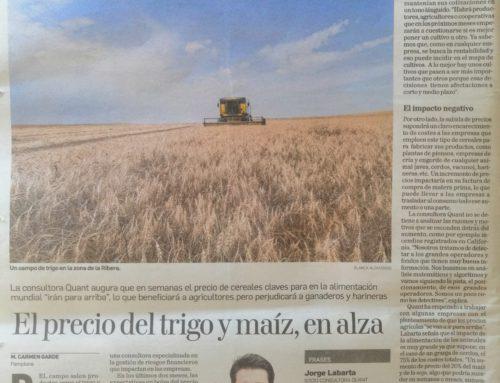 El resurgir de los granos agrícolas: evolución del precio de la soja, el maíz y el trigo